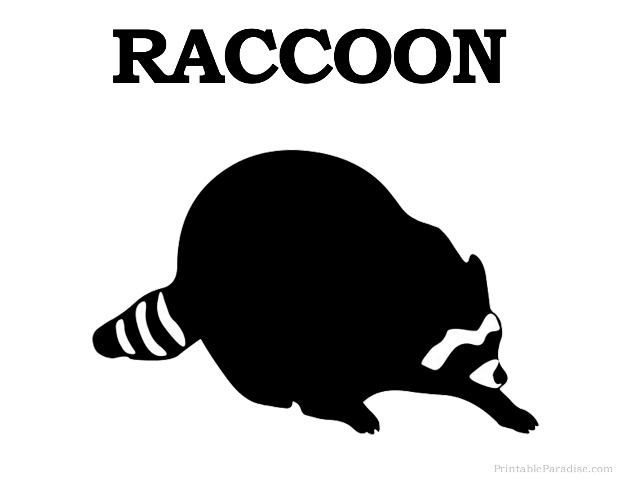 Printable Raccoon Silhouette