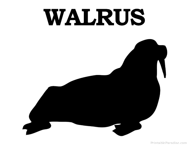Printable Animal Silhouettes Printable Walrus Silhouette