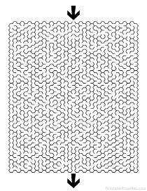 Printable Hexagon Maze -Difficult